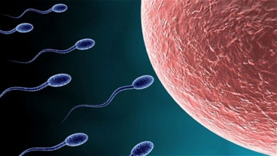 Men have a ticking biological clock too, says study