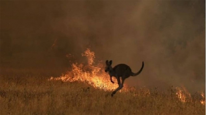Australian fires: Victorians urged to leave amid fears 'heat spike' will cause bushfires to merge