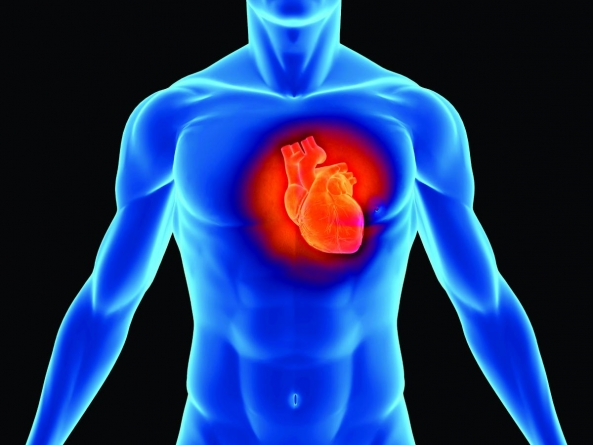 Fasting is Good For Heart